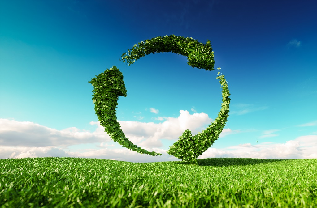 Embedding Sustainability into Daily Business