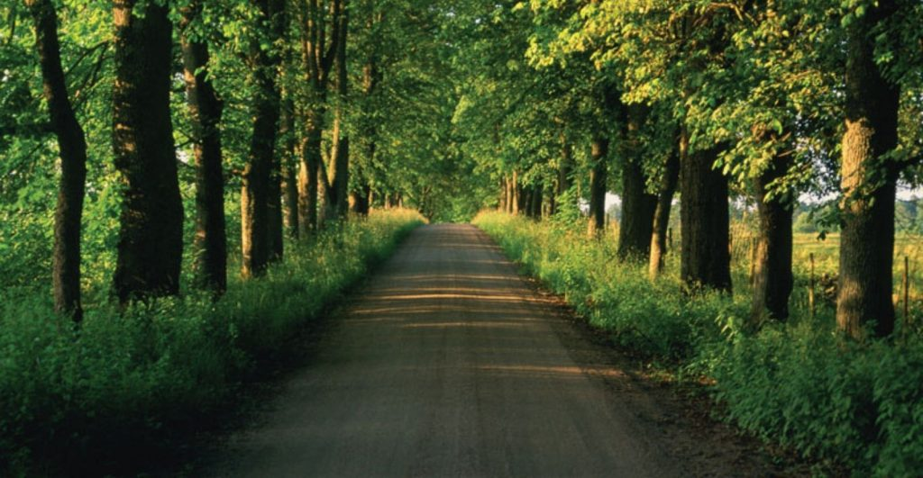 The road towards circularity and carbon neutrality at Braskem